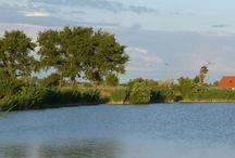 Horgásztó Eladó / Horgásztó eladó! Halastó eladó! Lajosmizse határában csendes, nyugodt környezetben eladó egy betonúton jól megközelíthető 8,15 ha-os területen 3 db tóból álló horgásztó (vízfelület: 7,2 ha).  http://horgasztoelado.hu/