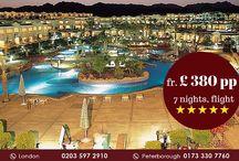 Hilton Sharm Dreams Resort, Sharm el Sheikh Holidays