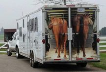 Travel and Horse Trail Adventures / by Abler Equine Pharmaceutical