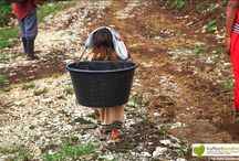 Costa Ricas Hidden Coffee Kids / Die Fotografin Michele Zousmer erzählt, was sie in Costa Rica mit den Hidden Coffee Kids erlebt hat. Sie hat für das Kaffeebündnis ihre Erlebnisse aufgeschrieben und ihre Fotos zur Verfügung gestellt. Dafür bedanken wir uns herzlich.