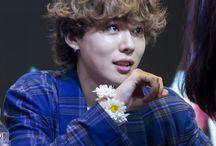 WINNER   Kim JinWoo (Jinu)