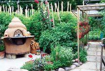 Gardening / by Christy Keane
