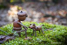 Sweet Miniature