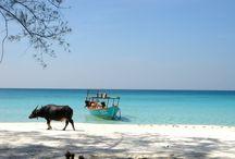 Kambodja sud