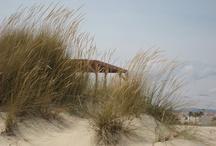 my  l  casa da ria / a casa da ria em frente ao mar, para os amigos ...e outros