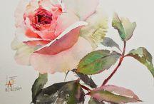 Rose A L'aquarelle