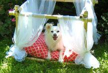 Puppy Love<3 / by Cristal Kelley