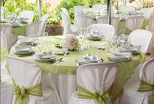 Hochzeit in Grün & Weiß