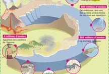 Longue histoire des océans
