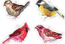 Birds / by Iris Bernardo