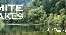 Yosemite Adventure!