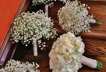 nunta ioa