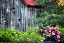 country living!!! / by Charlene Howell