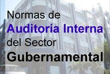 Auditoria Gubernamental / Normas de auditoria Gubernamental