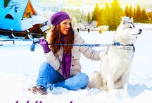 The Sled Dog Series / Get ready to fall in love with a special pack of retired sled dogs, each who change their new owners' lives for the better. This new Christian Romance series will leave you wondering who rescued who?
