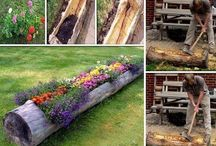 landscaping ideas / by Theresa Jones