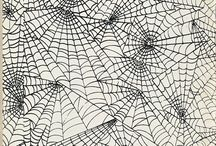 Spider Webs  / by Vicki Hill