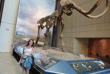 Museum Public Milwaukee
