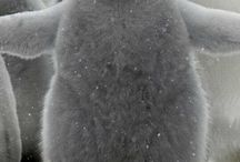 I ❤ penguins