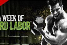 A Week Of Hard Labor Sagi Kalev