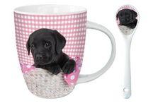 Frühstück / Was braucht es für ein gutes Frühstück? Guter Kaffee in schönen Tassen.