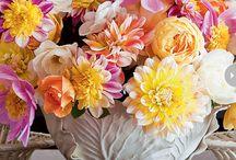 FLOWERS / by Moira Gavin