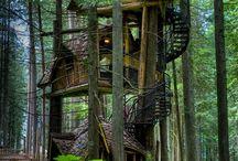 Domčeky na stromoch