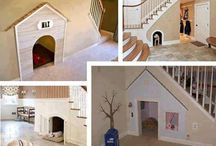 Dog spaces / by Kristen Foland