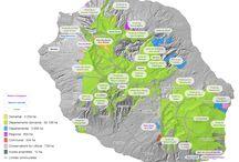 Forêts de La Réunion