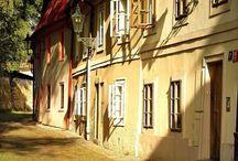 Prague David Šedivý