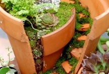 .Miniature Gardens. / Whether they're for fairies, gnomes or just for fun- miniature gardening is a growing trend that's sure to spark your interest!