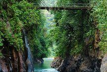 köprü resmi