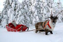 Unde îți doreşti să iți petreci #Crăciunul? / Ce ai spune de o călătoria în Țara lui Moş Crăciun? http://goo.gl/QVjksi #VacantaLaponia