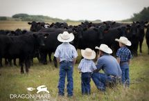 for.our.ranch.babies <3 / by Melinda Collins