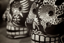 Skulls / by Bee Rodriguez