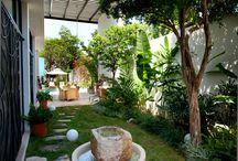Bahçede Havuz