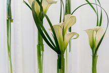 Floral decor& arrangements