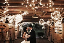 Wedding / by Karen Brettingen