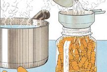 Food Storage & Canning / by Angela Sims McDonald