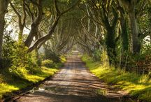 Game of Thrones location / You know nothing... YET ! From Spain, to Iceland and Malta, the producers of Game of Thrones travel the world to find some breathtaking location to feed the imagination of the fans. If you are looking for the location of your next holiday, here's a bit of inspiration! / by STA Travel
