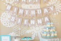 Hailey's First Birthday