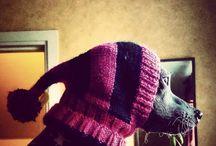 Crochet - Four-legged Babies