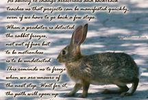 Hare Rabbit totem