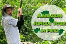 Amazon Jungle Tour in Peru