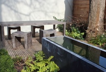 b+c garden ideas / thoughts and inspiration for a frinds garden