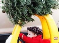 Photography - Christmas