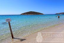 Mare e spiagge in Sardegna