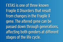 FXTAS (Fragile X Ataxia Syndrome)