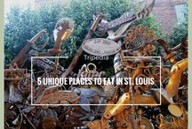 Your St. Louis, Missouri Travel Guide / Travel Information about St. Louis, Missouri by locals