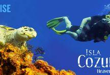 Conoce la Isla Cozumel